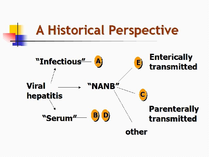 "A Historical Perspective ""Infectious"" Viral hepatitis ""Serum"" A ""NANB"" E Enterically transmitted C Parenterally"