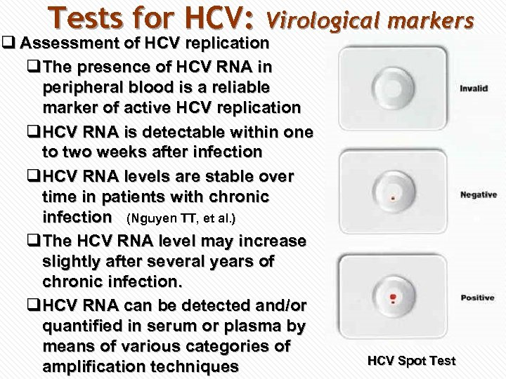 Tests for HCV: Virological markers q Assessment of HCV replication q. The presence of