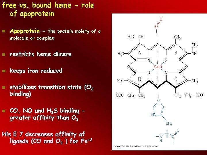 free vs. bound heme - role of apoprotein Apoprotein - restricts heme dimers keeps