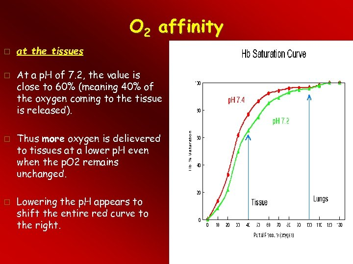 O 2 affinity at the tissues At a p. H of 7. 2, the
