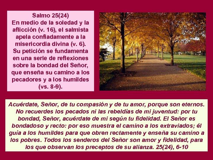 Salmo 25(24) En medio de la soledad y la aflicción (v. 16), el salmista