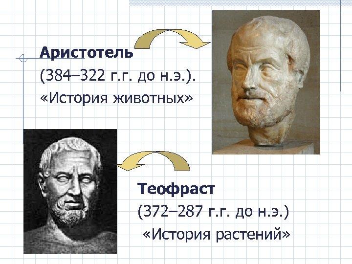 Аристотель (384– 322 г. г. до н. э. ). «История животных» Теофраст (372– 287