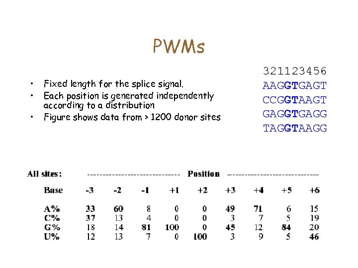 PWMs • • • Fixed length for the splice signal. Each position is generated