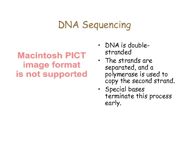 DNA Sequencing • DNA is doublestranded • The strands are separated, and a polymerase