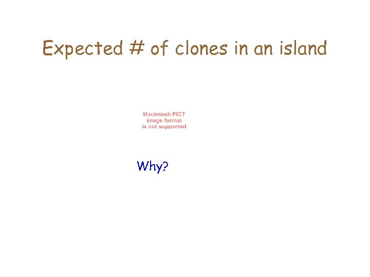 Expected # of clones in an island Why?