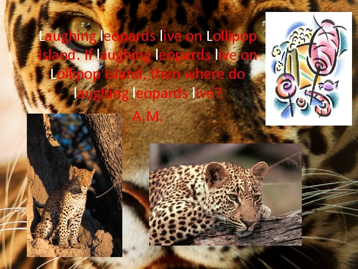 Laughing leopards live on Lollipop Island. If laughing leopards live on Lollipop Island, then