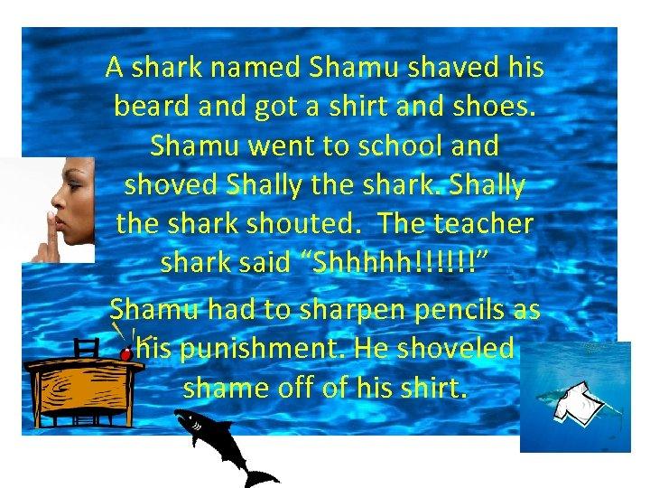 A shark named Shamu shaved his beard and got a shirt and shoes. Shamu