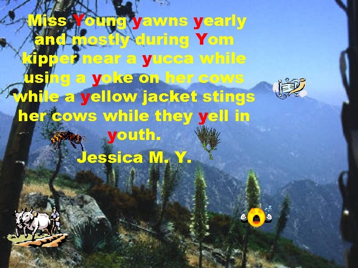 Miss Young yawns yearly and mostly during Yom kipper near a yucca while using