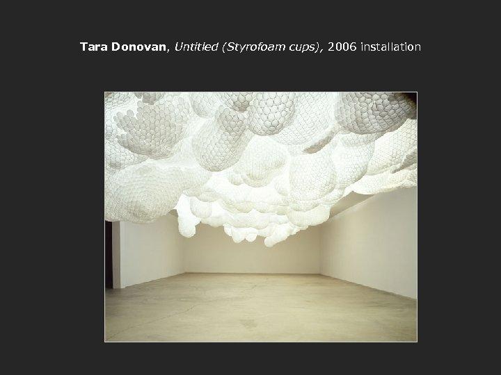 Tara Donovan, Untitled (Styrofoam cups), 2006 installation