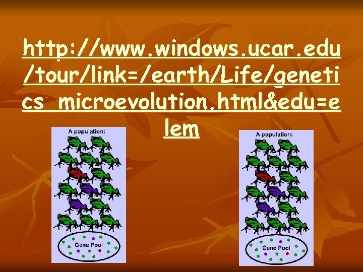 http: //www. windows. ucar. edu /tour/link=/earth/Life/geneti cs_microevolution. html&edu=e lem