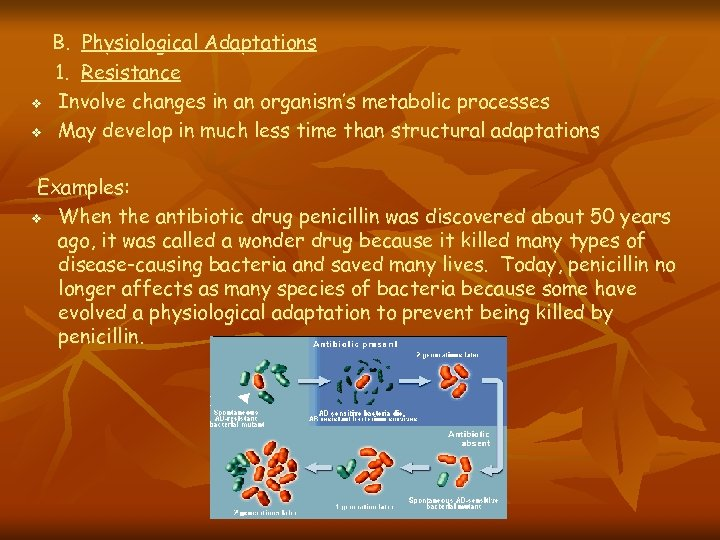 v v B. Physiological Adaptations 1. Resistance Involve changes in an organism's metabolic processes