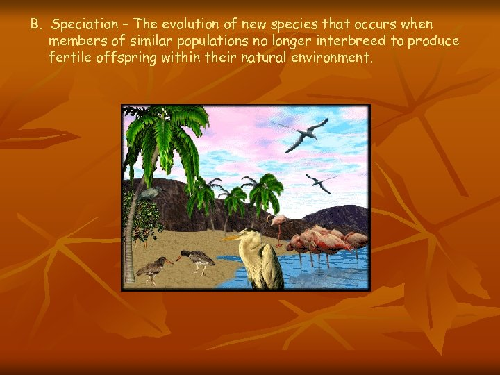 B. Speciation – The evolution of new species that occurs when members of similar