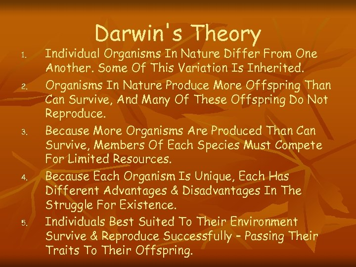 Darwin's Theory 1. 2. 3. 4. 5. Individual Organisms In Nature Differ From One