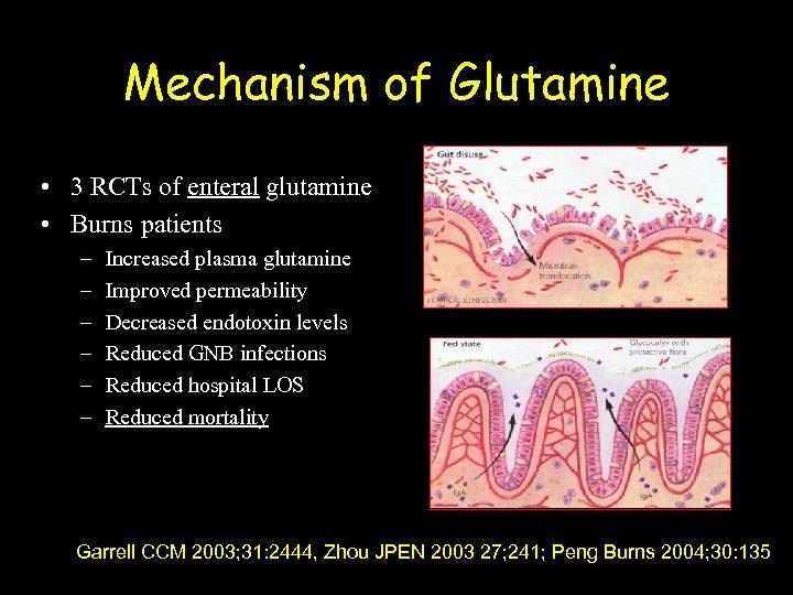 Mechanism of Glutamine • 3 RCTs of enteral glutamine • Burns patients – –