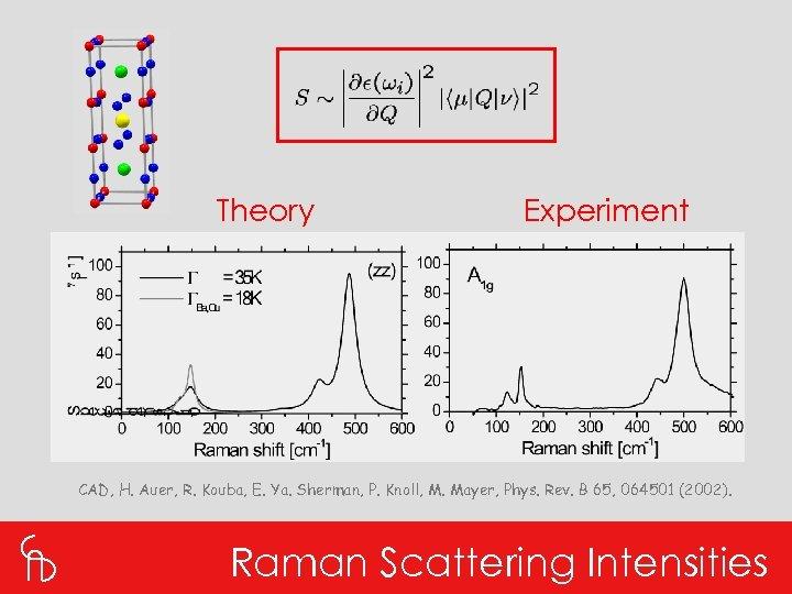 Theory Experiment CAD, H. Auer, R. Kouba, E. Ya. Sherman, P. Knoll, M. Mayer,