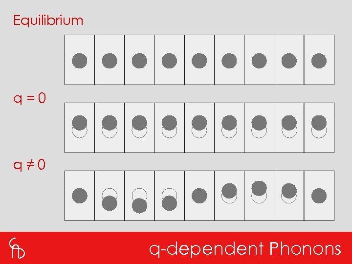 Equilibrium q=0 q≠ 0 q-dependent Phonons