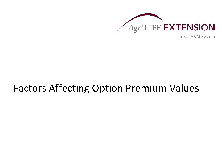 Factors Affecting Option Premium Values