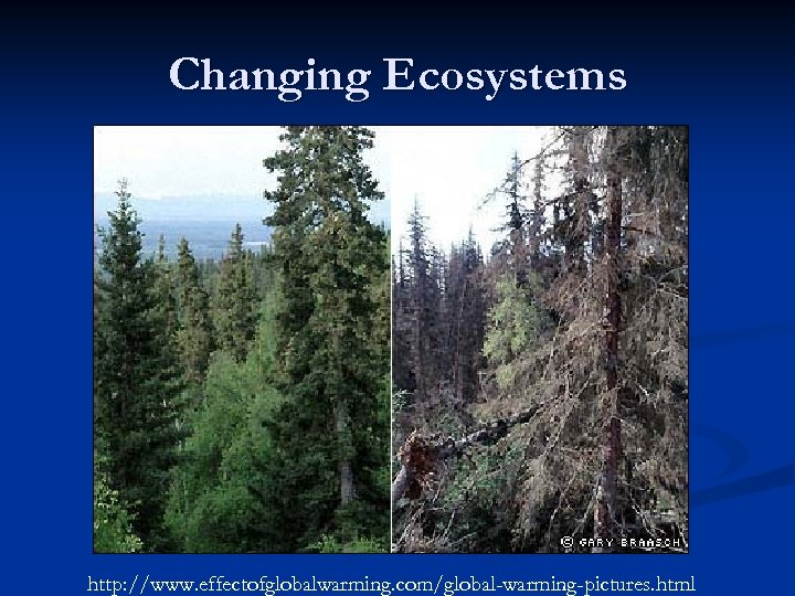 Changing Ecosystems http: //www. effectofglobalwarming. com/global-warming-pictures. html