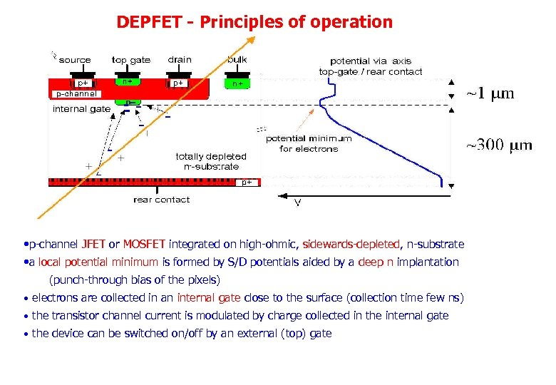 DEPFET - Principles of operation • p-channel JFET or MOSFET integrated on high-ohmic, sidewards-depleted,