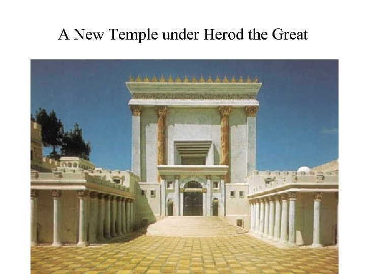 A New Temple under Herod the Great