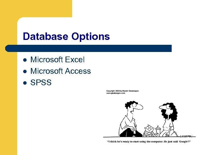 Database Options l l l Microsoft Excel Microsoft Access SPSS