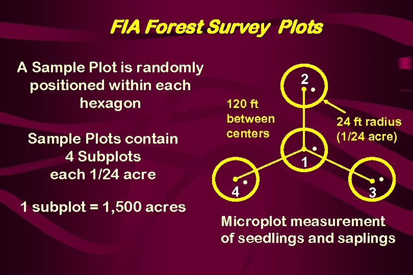 FIA Forest Survey Plots A Sample Plot is randomly positioned within each hexagon Sample