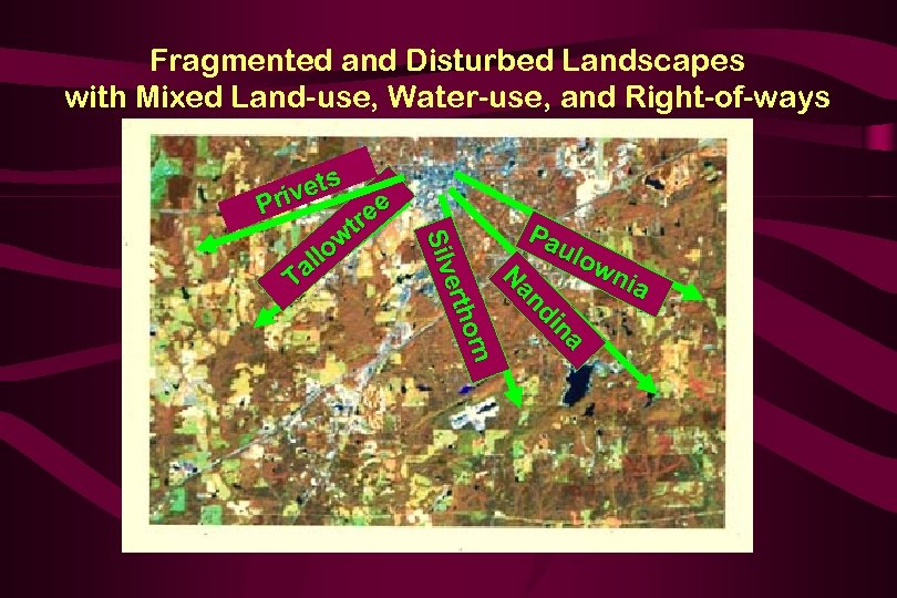 Fragmented and Disturbed Landscapes with Mixed Land-use, Water-use, and Right-of-ways s vet Pri Pa