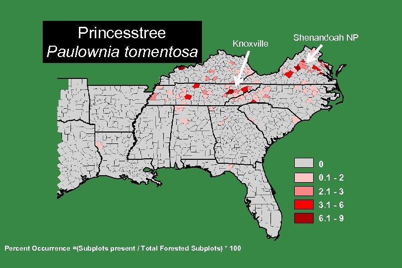 Princesstree Paulownia tomentosa Knoxville Shenandoah NP 0 0. 1 - 2 2. 1 -
