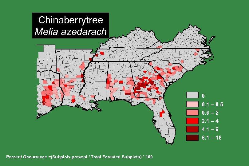 Chinaberrytree Melia azedarach 0 0. 1 – 0. 5 0. 6 – 2 2.