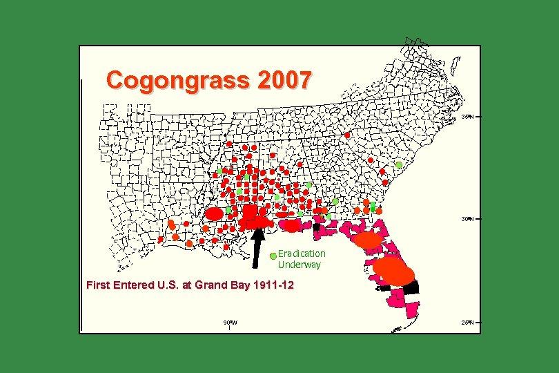 Cogongrass 2007 35ºN 30ºN Eradication Underway First Entered U. S. at Grand Bay 1911