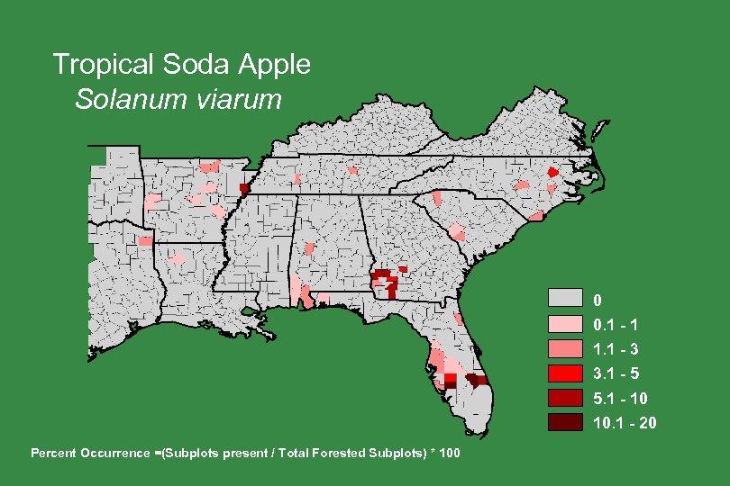 Tropical Soda Apple Solanum viarum 0 0. 1 - 1 1. 1 - 3
