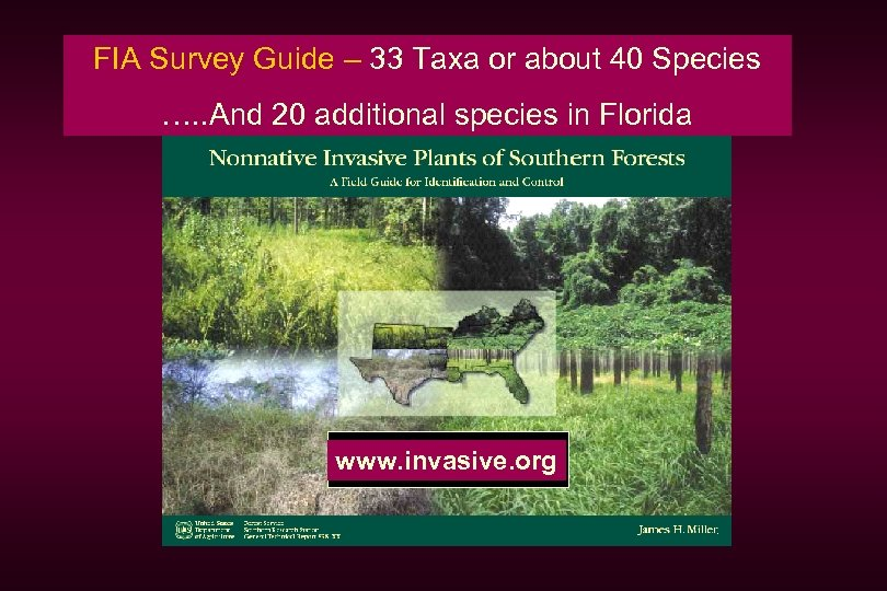 FIA Survey Guide – 33 Taxa or about 40 Species …. . And 20