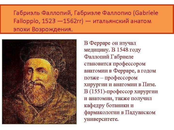Габриэль Фаллопий, Габриэле Фаллопио (Gabriele Falloppio, 1523 — 1562 гг) — итальянский анатом эпохи