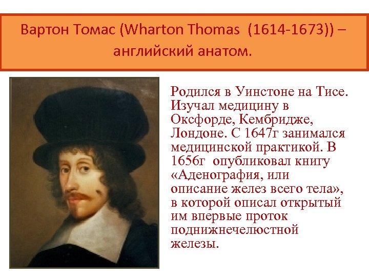 Вартон Томас (Wharton Thomas (1614 -1673)) – английский анатом. Родился в Уинстоне на Тисе.