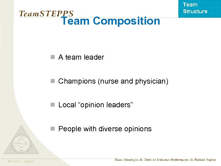 Team Structure Team Composition n A team leader n Champions (nurse and physician) n