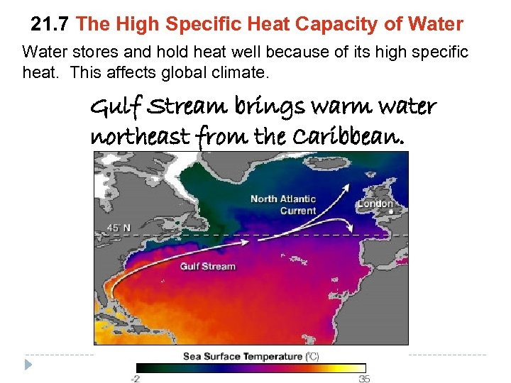 21. 7 The High Specific Heat Capacity of Water stores and hold heat well
