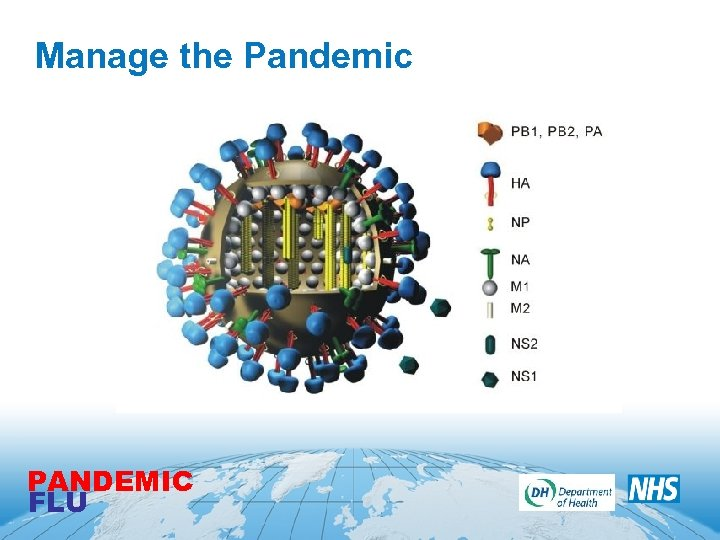 Manage the Pandemic PANDEMIC FLU