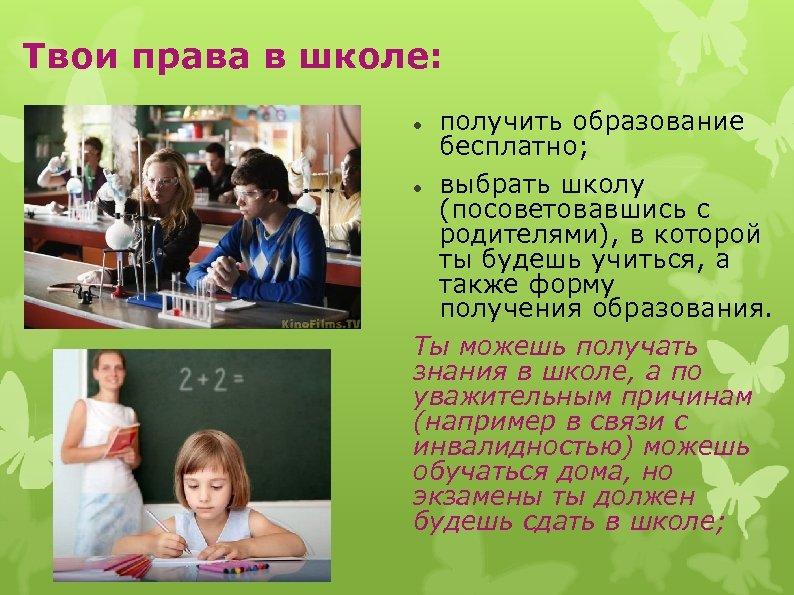 Твои права в школе: получить образование бесплатно; выбрать школу (посоветовавшись с родителями), в которой
