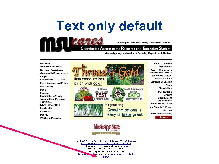 Text only default