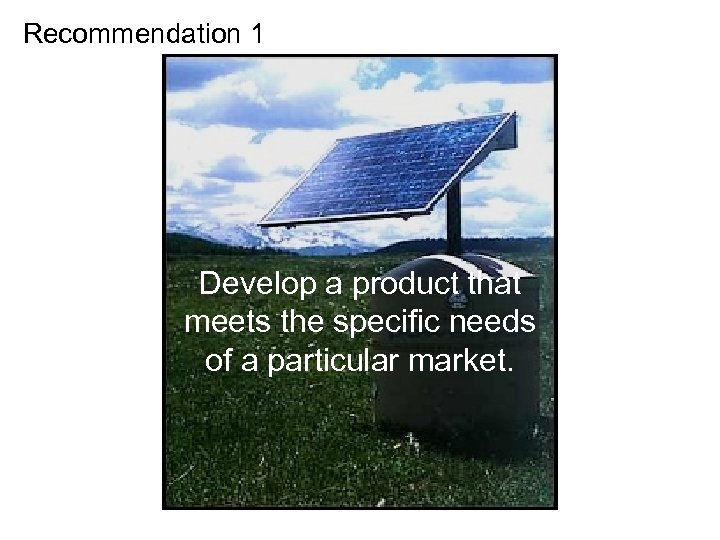 Recommendation 1 Develop a product that meets the specific needs of a particular market.