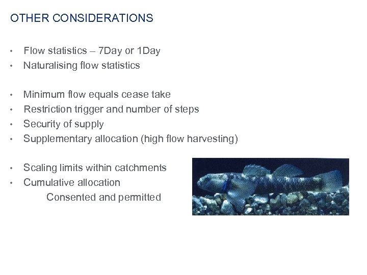 OTHER CONSIDERATIONS • • Flow statistics – 7 Day or 1 Day Naturalising flow