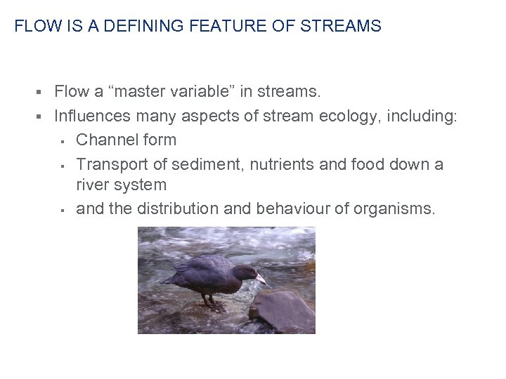 "FLOW IS A DEFINING FEATURE OF STREAMS Flow a ""master variable"" in streams. §"