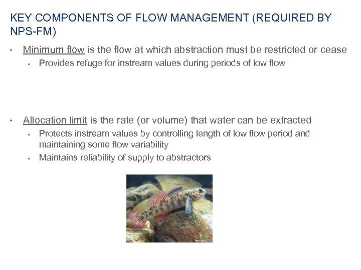 KEY COMPONENTS OF FLOW MANAGEMENT (REQUIRED BY NPS-FM) • Minimum flow is the flow