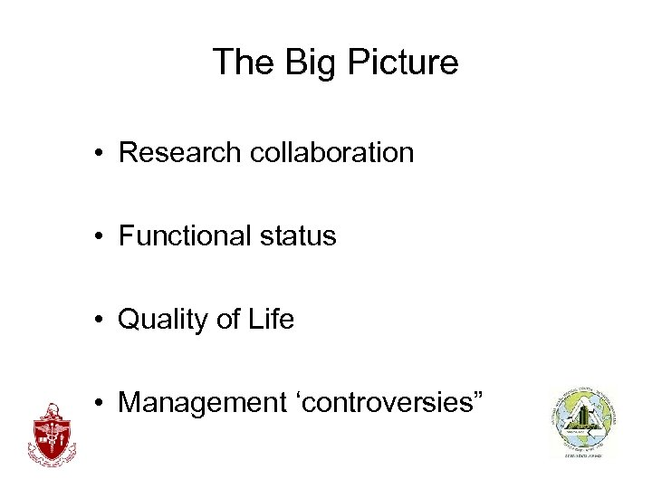 The Big Picture • Research collaboration • Functional status • Quality of Life