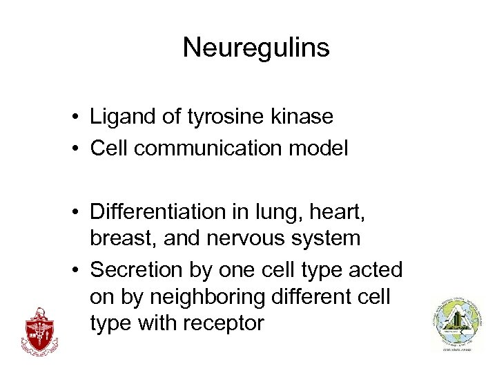 Neuregulins • Ligand of tyrosine kinase • Cell communication model • Differentiation in