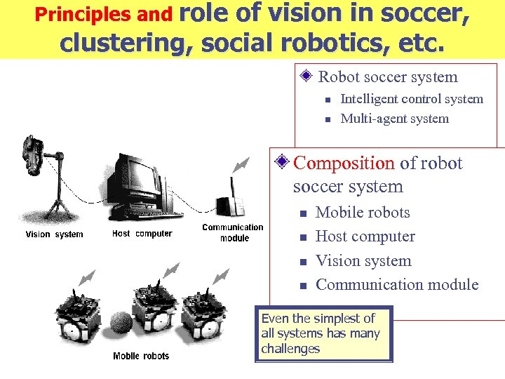 Principles and role of vision in soccer, clustering, social robotics, etc. Robot soccer system