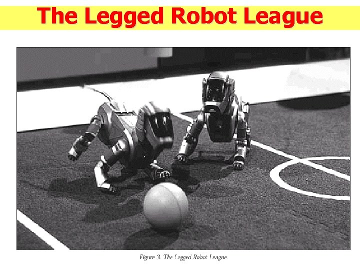 The Legged Robot League