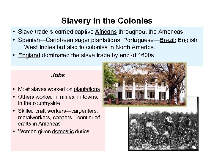 Slavery in the Colonies • Slave traders carried captive Africans throughout the Americas •