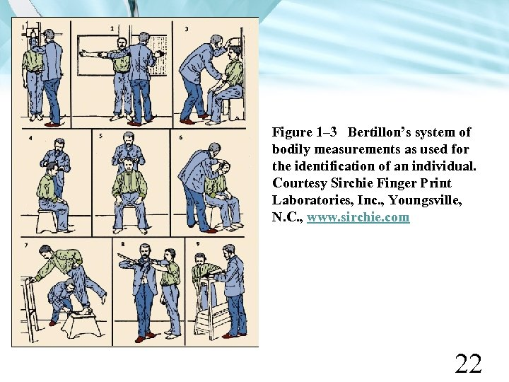 Figure 1– 3 Bertillon's system of bodily measurements as used for the identification of