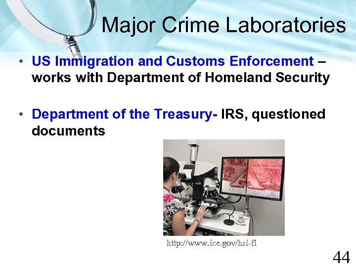 Major Crime Laboratories • US Immigration and Customs Enforcement – works with Department of